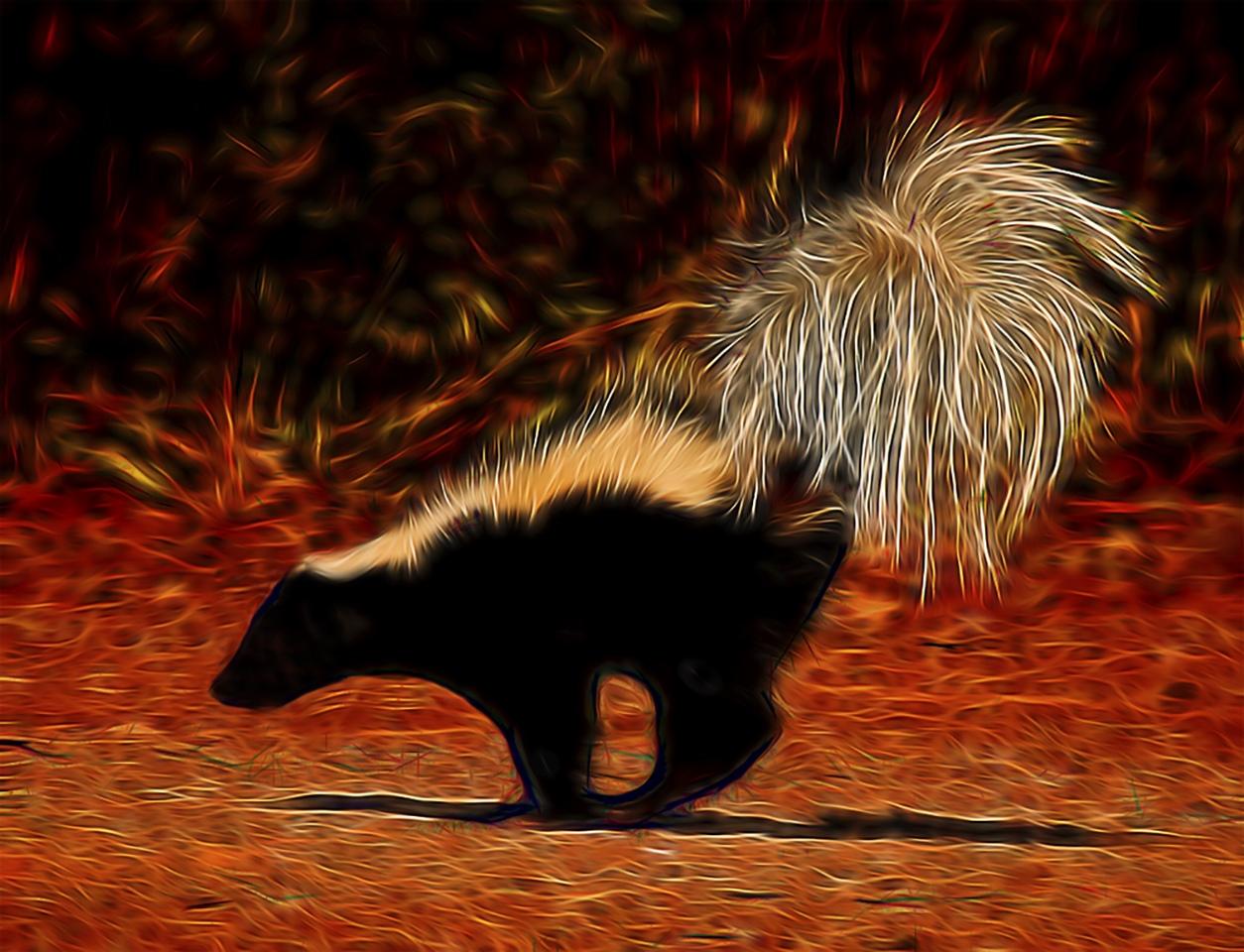 Skunked - M J Springett - WWPC
