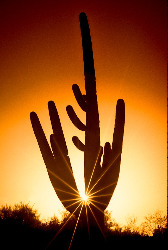 Arizona Sunset - Jim Duncan- SPCC