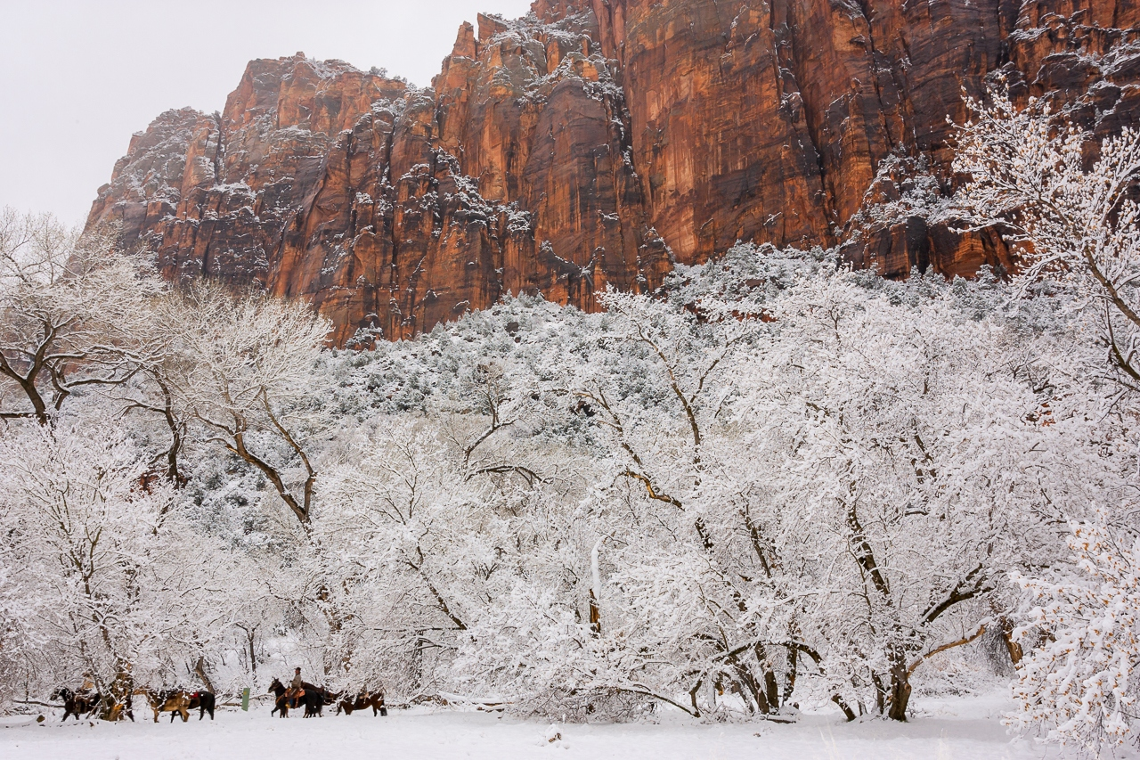 Cowboys in the Snow at Zion - Karl Fiegenschuh - MNPC