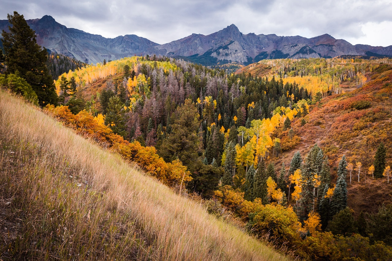 Fall in Colorado - Betty Bryan - WWPC