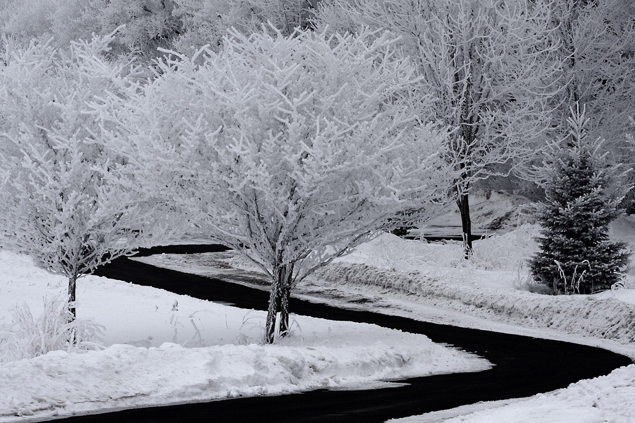 2nd Place Runner-Up Image of the Year - Hoar Frost Morning - Steven Richardson - SPCC