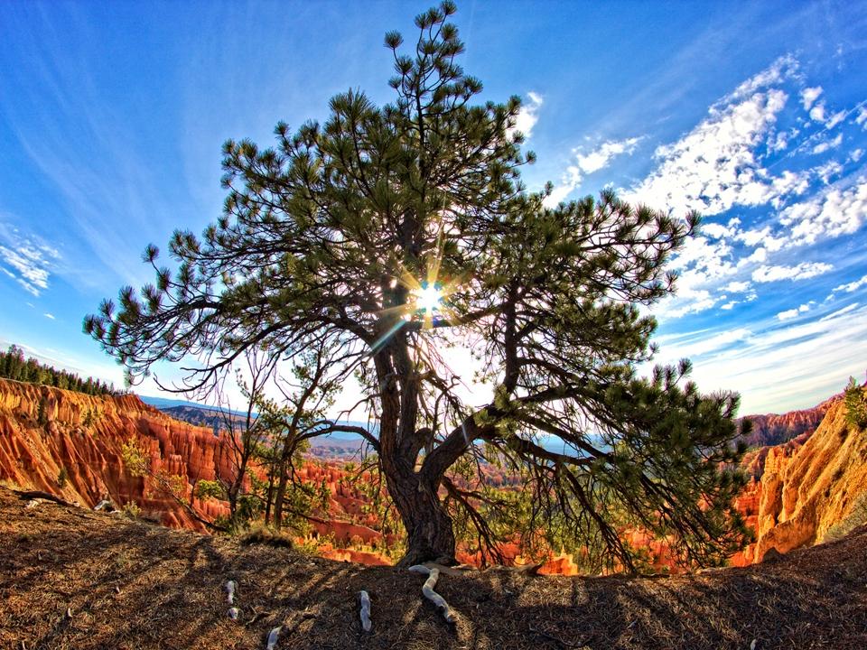 Bryce Canyon - Nick Warnken - WWPC