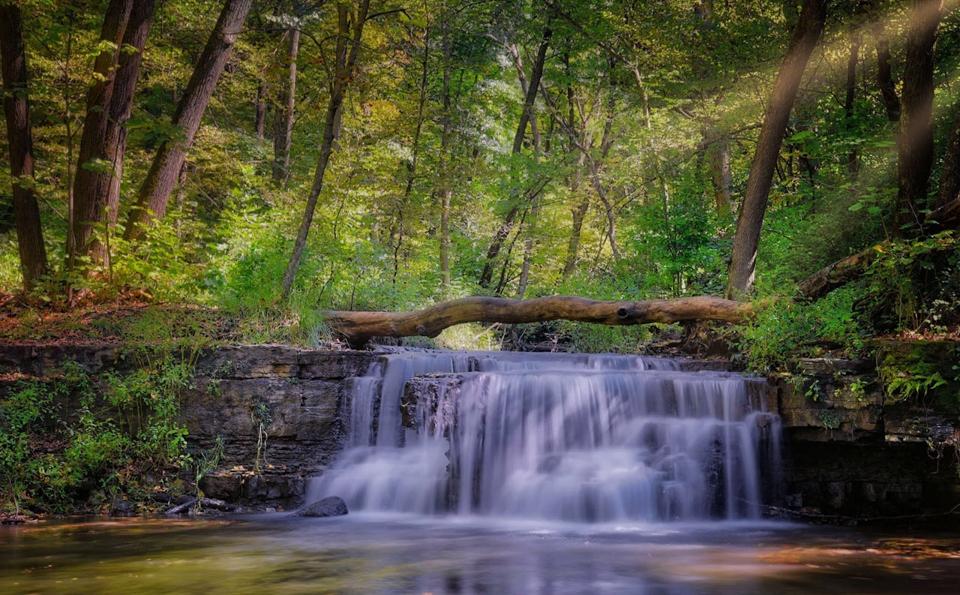 Caron Park Falls - Steve Pachol - NMPC
