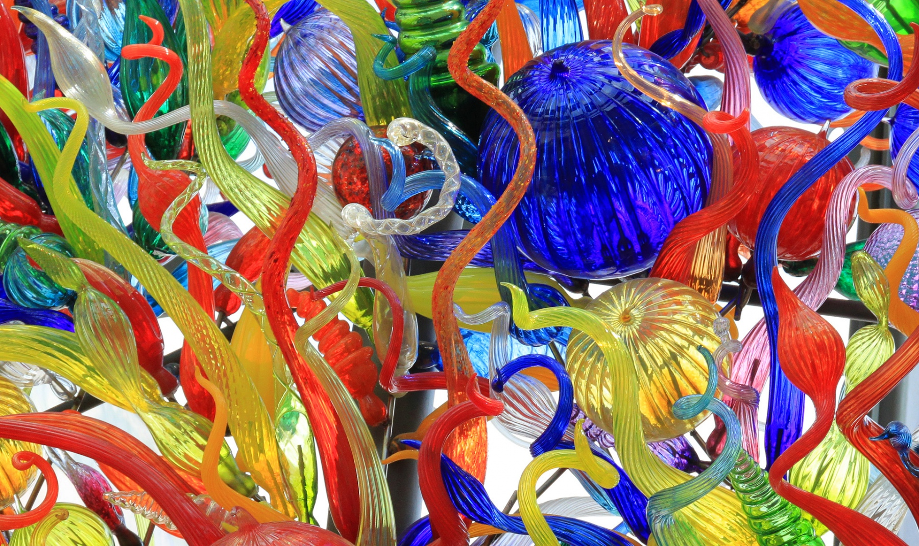 Chihuly Glass - Pat Schwope - SPCC