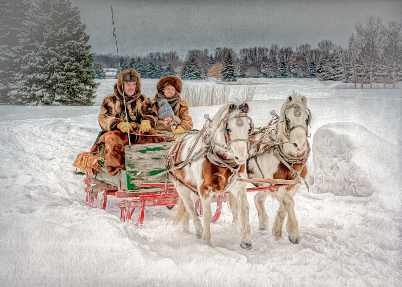 1st Place Image of the Year -An Old-fashioned Sleigh Ride - Marianne Diericks - Western Wisconsin Photography Club