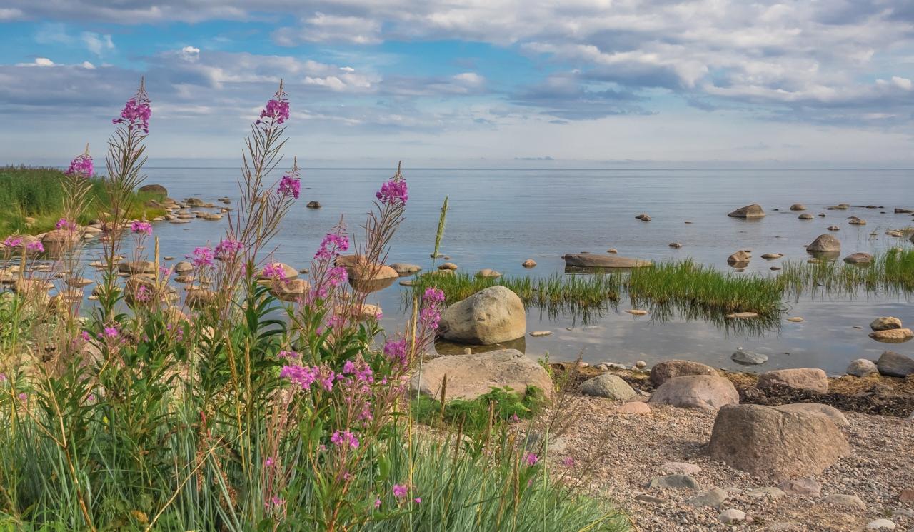 Still Summer Morning - Estonia - Cindy Carlsson - SPCC