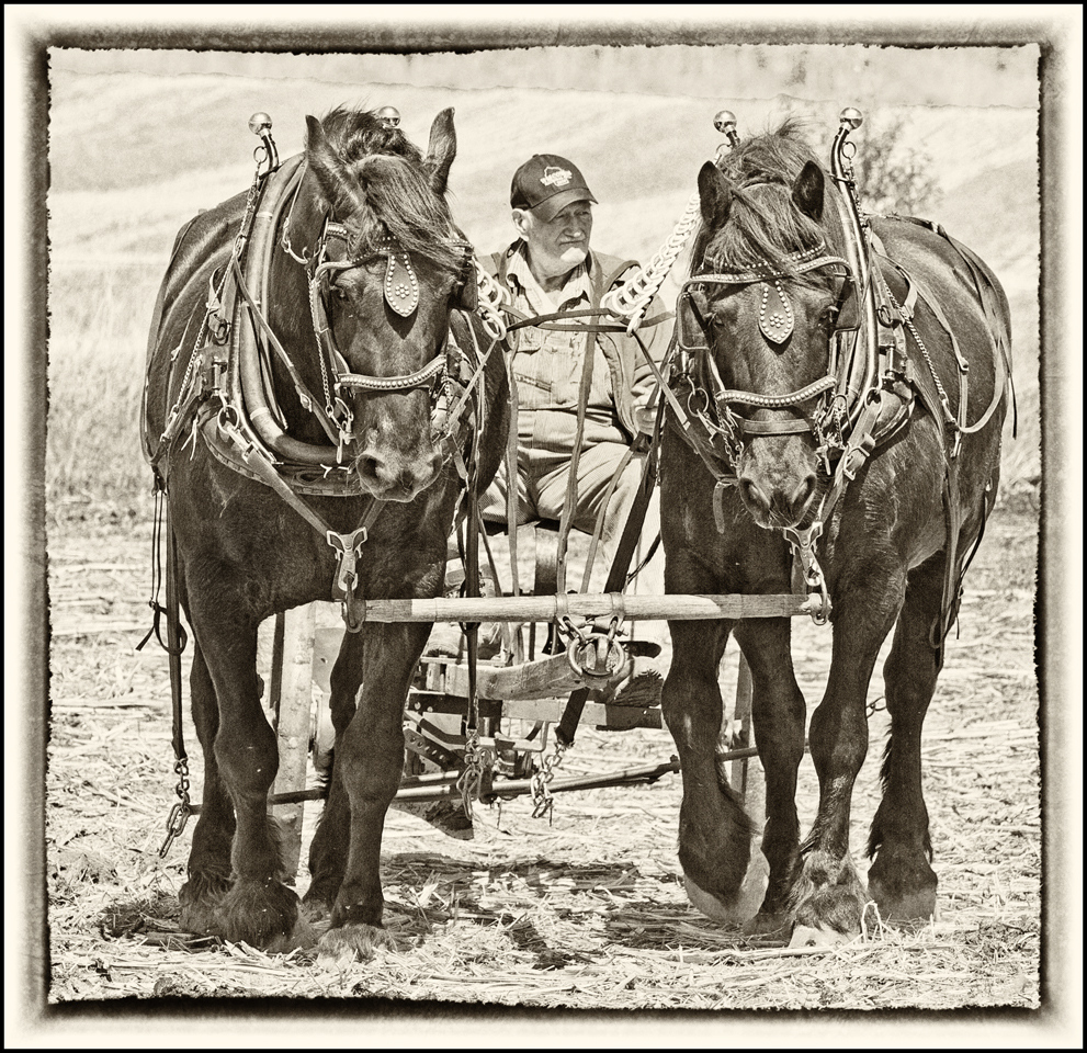 Spring Plowing - Ronnie Hartman - MPS