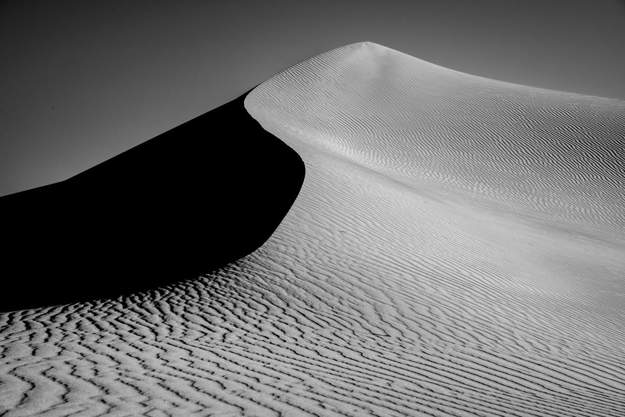 Sand Dune S-Curve - Diane Herman - MNPC