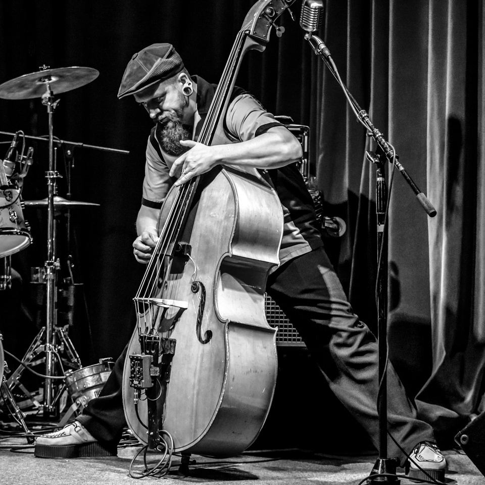 Award - Shredding the Double Bass - Al Whitaker - Fort Snelling State Park Camera Club