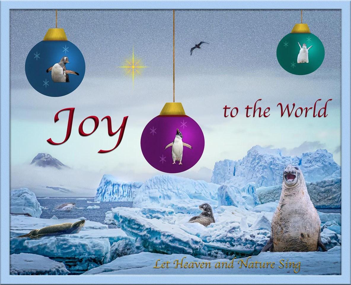 Antarctic Christmas - Linda Rutherford - WCPC