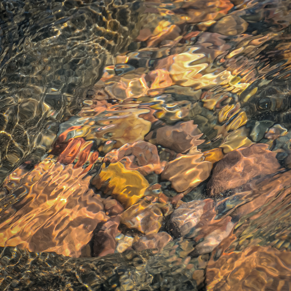 Ebb and Flow Along the Shore - Cindy Carlsson - SPCC