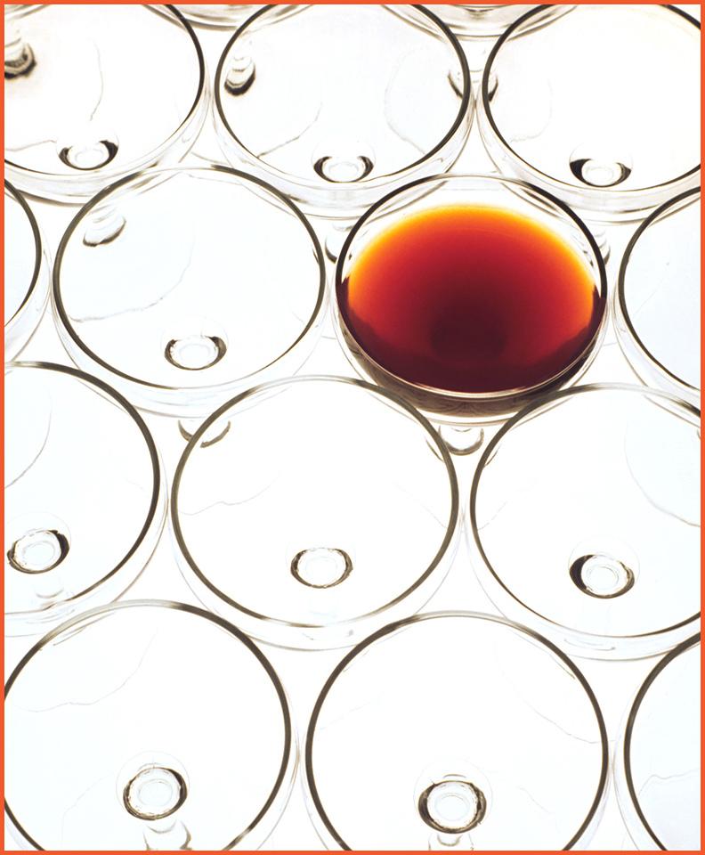 Red Red Wine - Gene Schwope - SPCC
