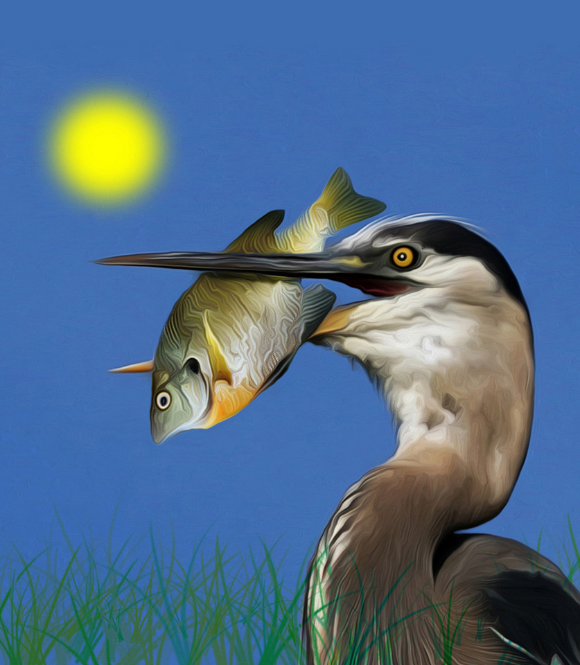 Award - Chow Time - Lawrence Syverud - Tamarack Nature Center Photo Club