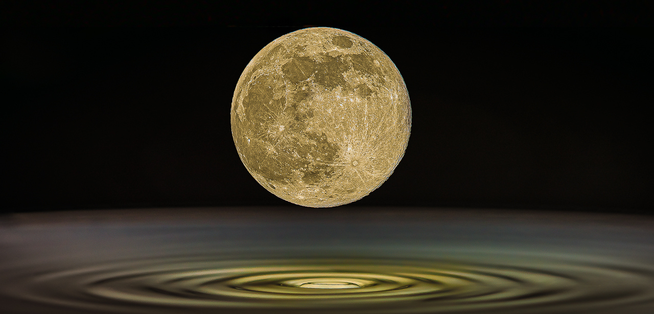 Honorable Mention - Milky Moon - Paul Bullock - Tamarack Nature Center Photo Club