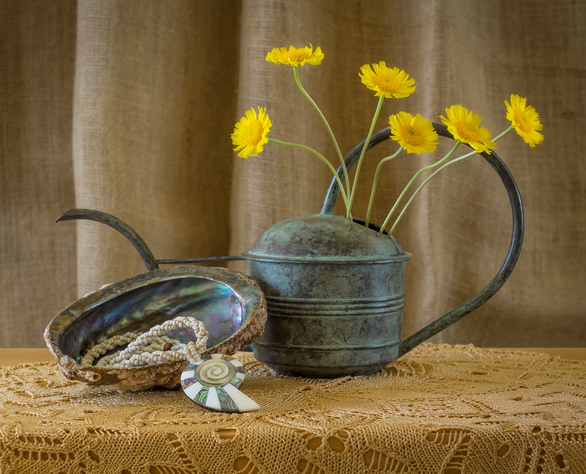 Abalone Shell and Daisies - Peggy  Boike - SCVCC
