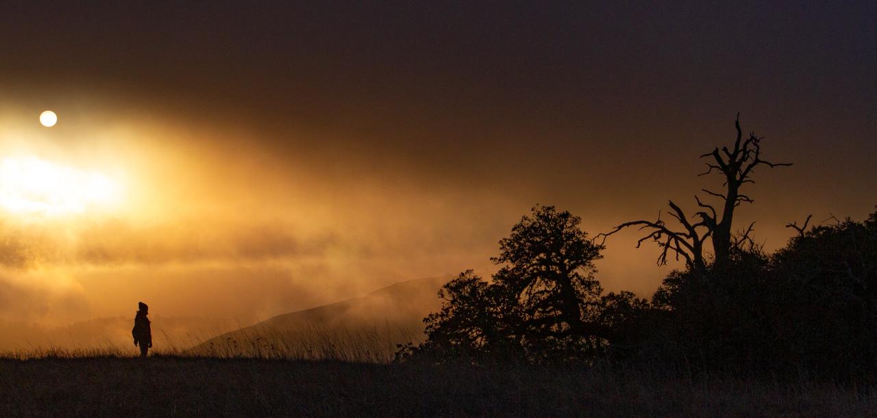Amazing Sunset - Shakun Maheshwari - MCC