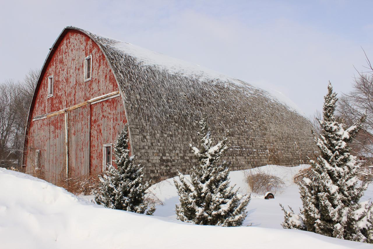 Barn With Trees - Curtis Hanson - MDPC