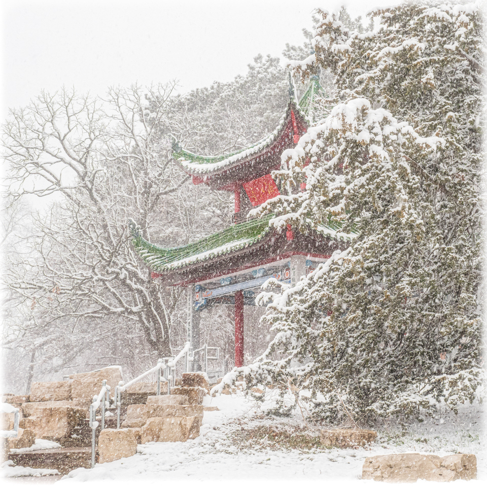 Spring Snow at the Chinese Pavilion - Cindy Carlsson - SPCC