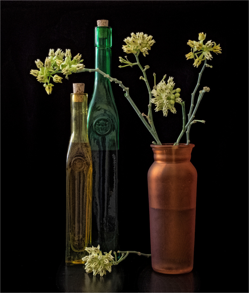 Tall Bottles and Milkweed - Peggy  Boike - SCVCC
